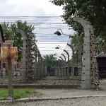 Auschwitz. Vorsicht...indeed