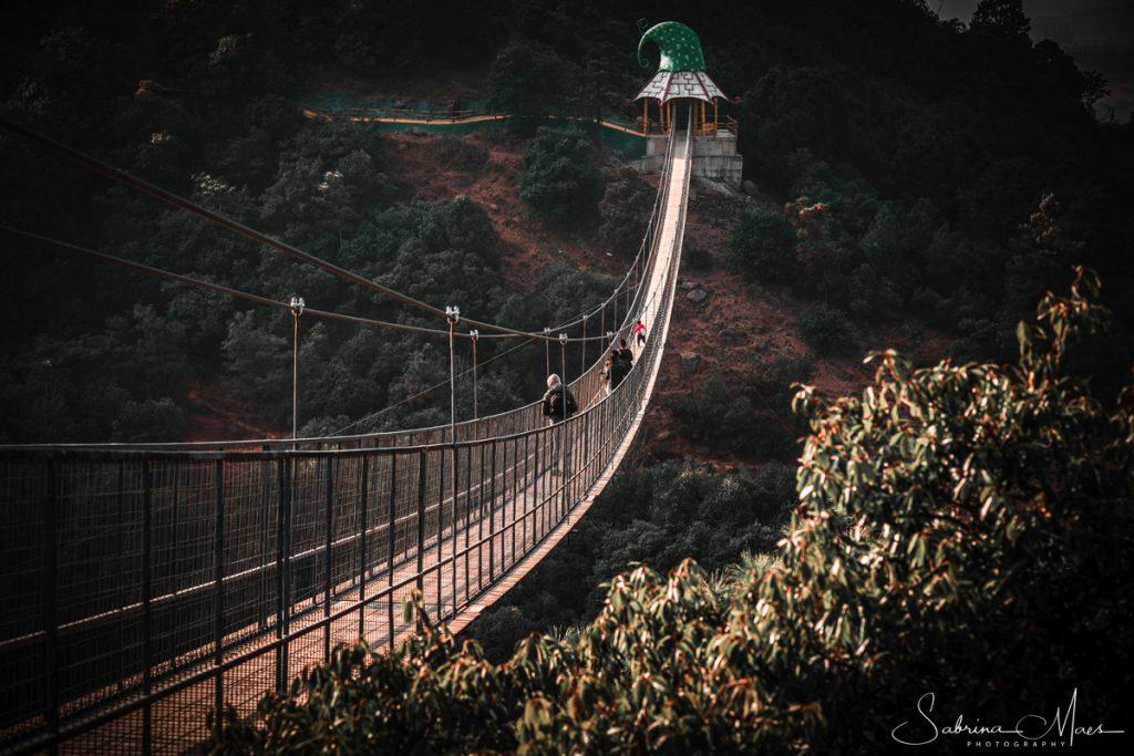 ©Sabrina Maes, Suspension bridge in Dwarf Empire